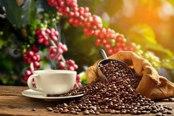 5 MÓN CÀ PHÊ KÌ LẠ NHẤT HÀNH TINH KHÔNG PHẢI COFFEEHOLIC NÀO CŨNG BIẾT