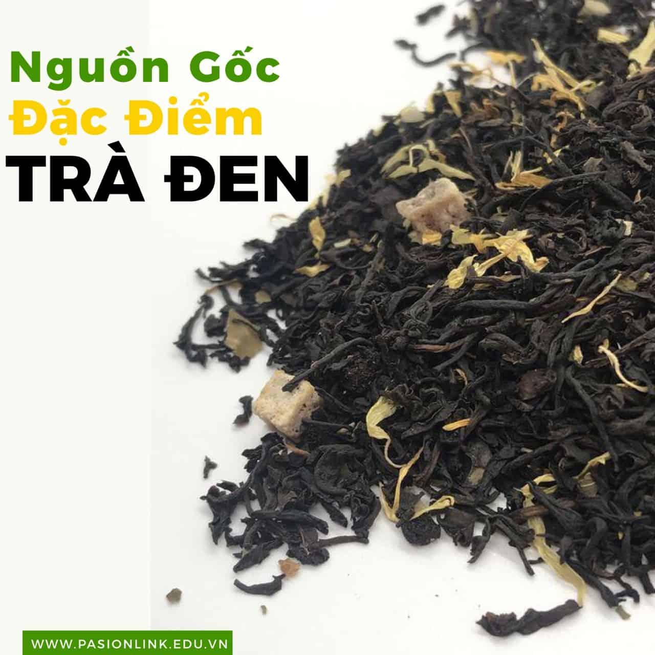 nguồn gốc trà sữa trà đen