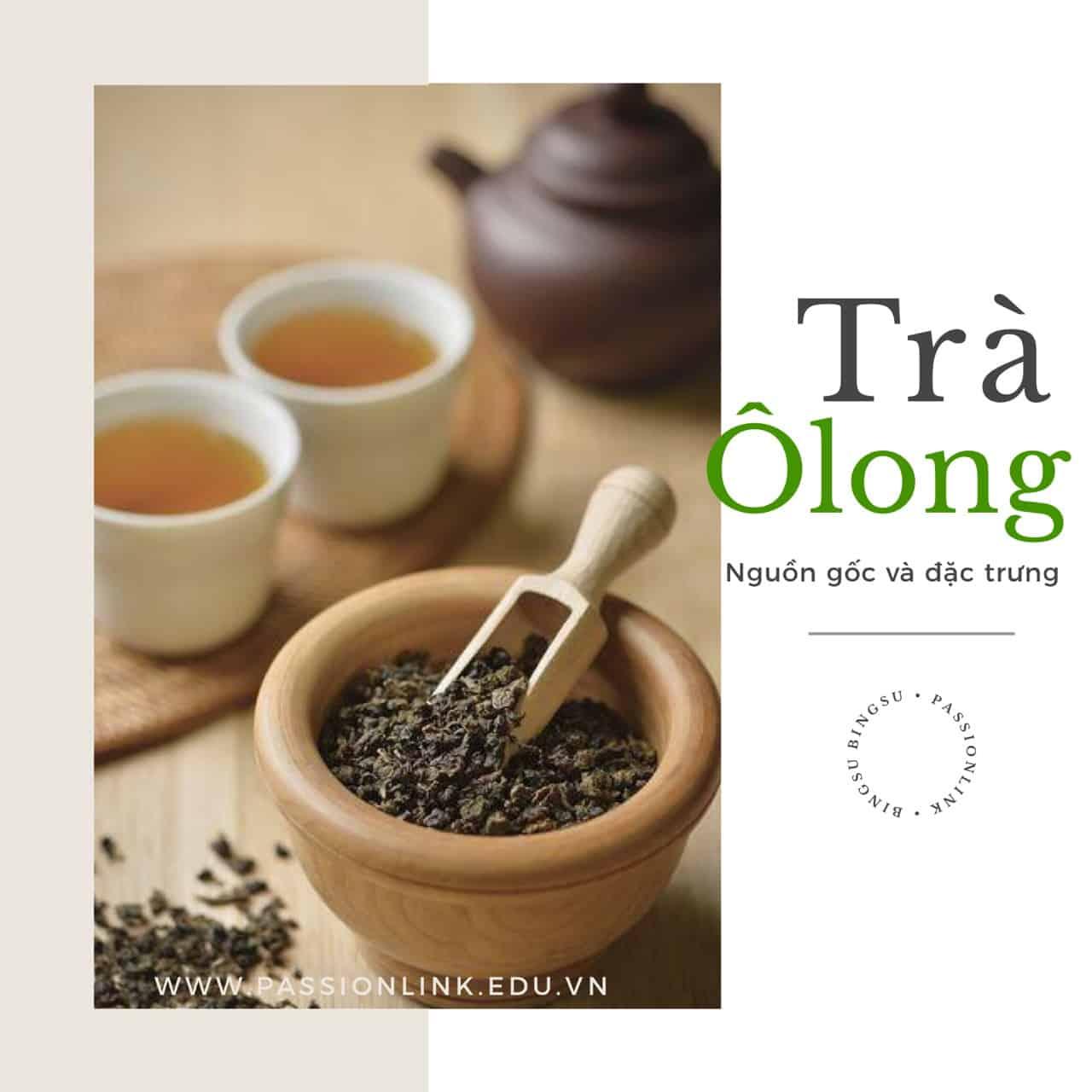 nguồn gốc trà ôlong